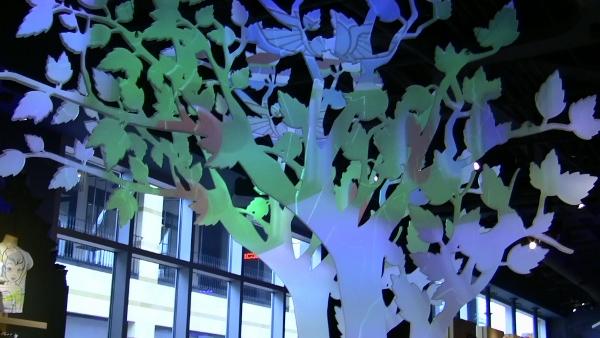 TDS Santa Monica Projection Trees