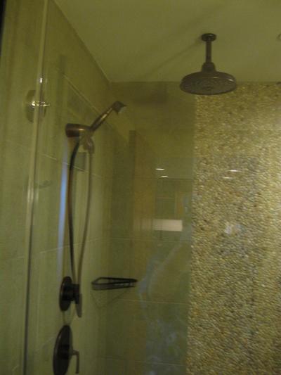 Aulani Construction Shower