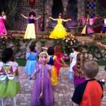 DL Princess Fantasy Faire Curtsey
