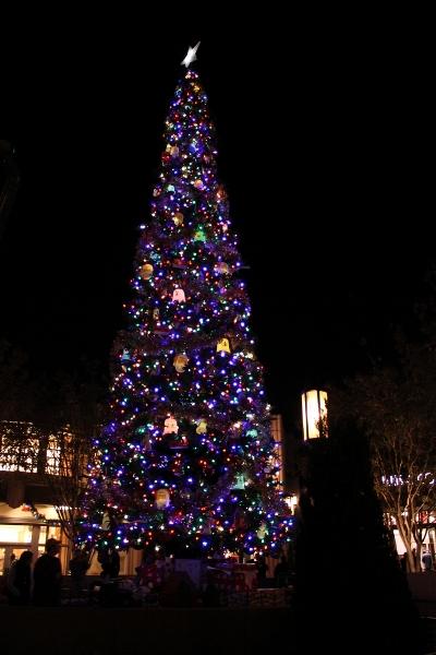 DL DCA Holiday Buena Vista Street Tree at Night (400×600)