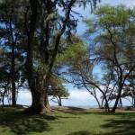 027_Maui_Park
